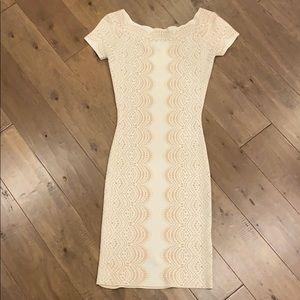BCBG Bodycon Knit Dress